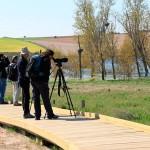 SEO/BirdLife y Turespaña promocionarán el turismo ornitológico en España