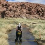 27 Años de Evaluación de Impacto Ambiental: La Vigilancia Ambiental