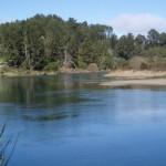 La UICN lanza la Lista Roja de Ecosistemas para evaluar sus riesgos ambientales