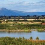 La ampliación de las Tablas de Daimiel incorporará ecosistemas terrestres