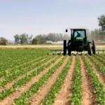Las ONG ambientales en desacuerdo con la nueva PAC