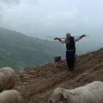 Pastores de la niebla