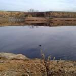 La laguna de aceite de Arganda estará restaurada en 2020
