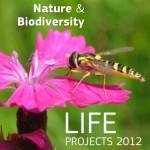 69 proyectos españoles elegidos por el programa Life +