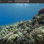 Google lanza Street View Océanos