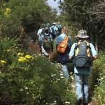 Agenda de Actividades Ambientales Agosto 2013