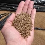 El proyecto BIOMASUD concede el primer sello de calidad para biocombustibles