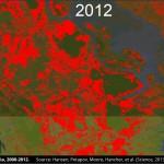 Google y la Universidad de Maryland crean el primer mapa detallado del cambio forestal mundial