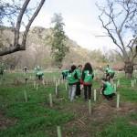 Actividades Ambientales 22 – 24 de Noviembre