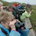 El turismo de naturaleza emerge en plena crisis