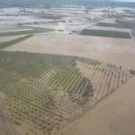 MAGRAMA crea la Comisión permanente para situaciones de adversidad climática o medioambiental