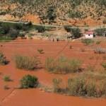 La repoblación de una cuenca hidrográfica, más efectiva que una presa para reducir inundaciones
