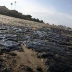 El Gobierno estudia el proyecto de Ley de modificación de la Ley de Responsabilidad Medioambiental