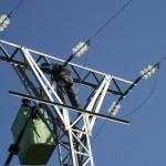MAGRAMA mejora el tendido eléctrico para evitar la muerte de aves en Murcia