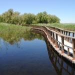 El Gobierno amplía en 1.102 hectáreas el Parque Nacional de las Tablas de Daimiel