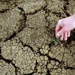 """El nuevo informe del IPCC confirma un """"abrumador"""" impacto del cambio climático"""
