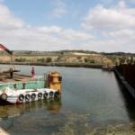 Arias Cañete defiende el Proyecto de Ley de Responsabilidad Medioambiental en el Congreso