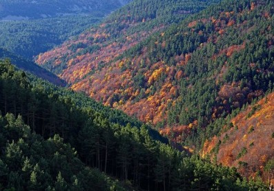 Sierra Cebollera. National Geographic