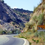 El atropello supone la principal causa de mortandad de fauna en la Comunidad Valenciana