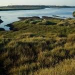 Actividades Ambientales 25 – 27 de Abril