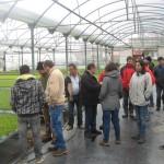 """Generando empleo en el medio rural: proyecto """"Cultivar la tierra"""""""