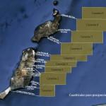 Medio Ambiente autoriza las prospecciones petrolíferas en Canarias