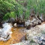 La Ley de Responsabilidad Medioambiental se aprobará hoy en el Congreso