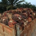 Los gigantes alimentarios contaminan más que la mayoría de países, según Oxfam