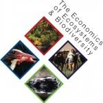 Empresa y Biodiversidad, más allá de la obligación legal