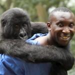 Virunga – Official Trailer 2014