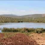 Actividades Ambientales 6 – 8 de Junio: Especial Día del Medio Ambiente