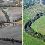 La Unesco certifica el informe que alerta del impacto del dragado y Aznalcóllar en Doñana