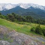 Actividades Ambientales 27 – 29 de Junio