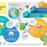 Infografía: La Biodiversidad en España