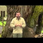 Recuperando patrimonio cultural y natural en zona de urogallo cantábrico