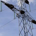 Red Eléctrica destina 200.000 euros para evitar la colisión de aves contra tendidos eléctricos