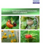 Técnicas y tratamientos ecológicos para huertos urbanos