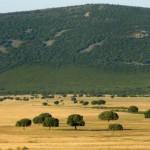 El Senado aprueba el proyecto de Ley de Parques Nacionales