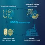 Ecodiseño: creación de nuevos materiales y la economía circular