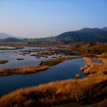 Actividades Ambientales 21 – 23 de noviembre