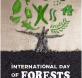 dia mundial bosques