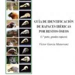 Guía de identificación de rapaces por restos óseos