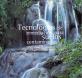 tecnologias remediacion suelos