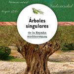 Cuaderno Técnico: Árboles singulares de la España Mediterránea