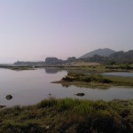 A la espera de los Bancos de Conservación de la Naturaleza