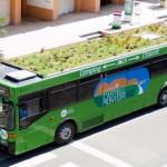 Barcelona, Girona y Palma estrenan autobuses con techo vegetal