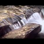 Agua, fuente de vida
