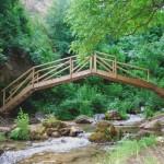 Actividades Ambientales 24 – 26 de Julio
