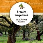 Cuaderno Técnico: Árboles Singulares de la España Interior