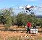 Cartografía de un olivar con drones. CSIC
